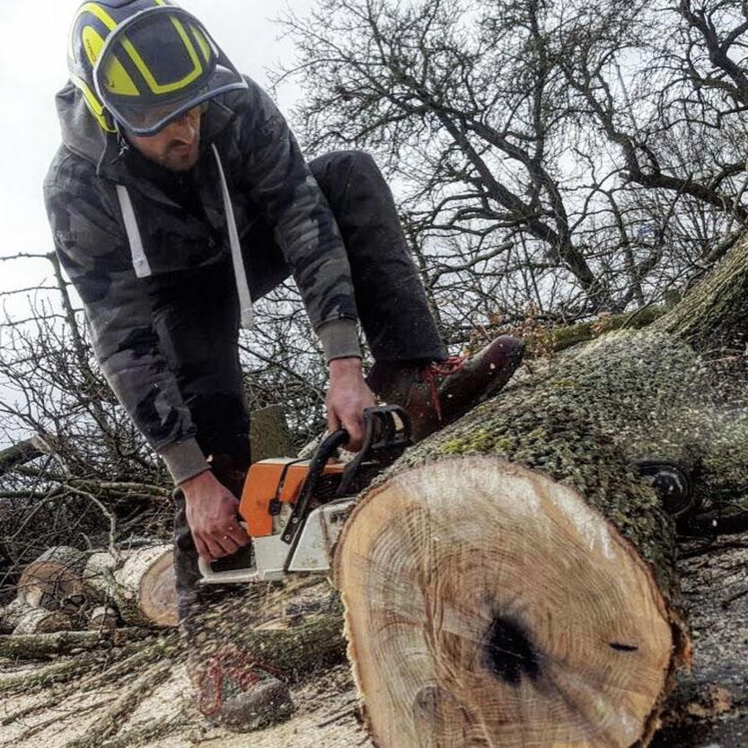 HoveniersbedrijfSakevanderWal-groenvoorziening-friesland-boomverzorging