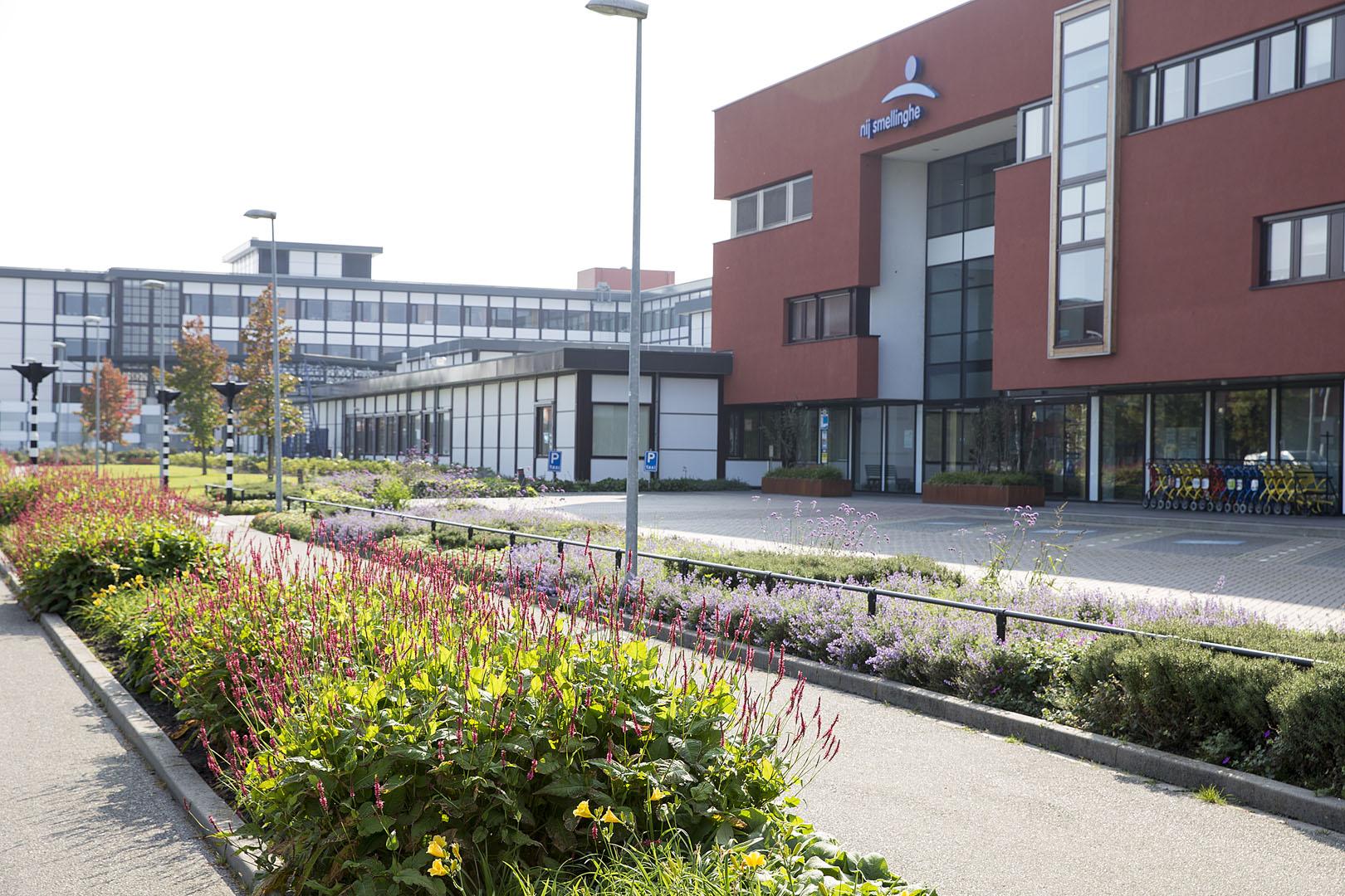 Hoveniersbedrijf Sake van der Wal Groenvoorziening Friesland 01a