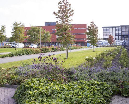 Hoveniersbedrijf Sake van der Wal Groenvoorziening Friesland