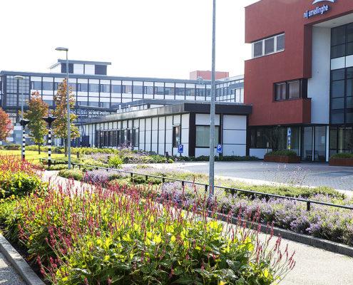 Groenvoorziening Friesland - hoveniersbedrijf Sake van der Wal - Tuinonderhoud-friesland-Tuintips